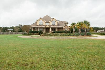 Baldwin County Single Family Home For Sale: 25135 County Road 49