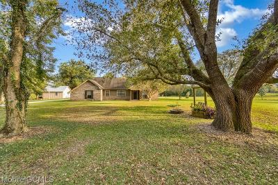 Baldwin County Single Family Home For Sale: 15710 Old Pierce Road
