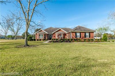 Baldwin County Single Family Home For Sale: 12911 Dominion Drive