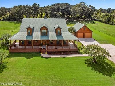 Mobile County Single Family Home For Sale: 9715 Bellingrath Road