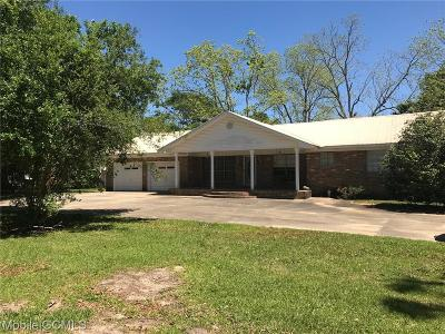 Mobile Single Family Home For Sale: 3621 Alba Club Road