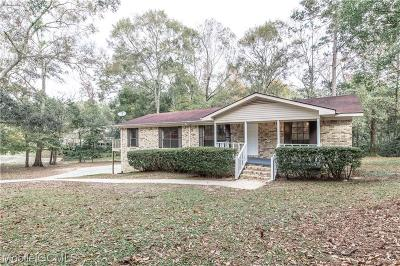 Mobile Single Family Home For Sale: 2419 West Road