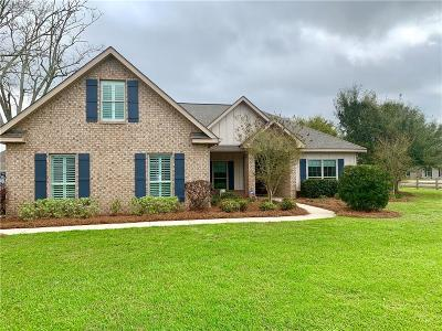 Baldwin County Single Family Home For Sale: 802 Summer Lake Street