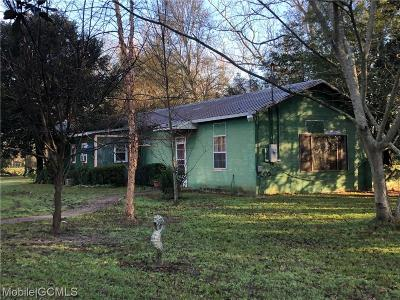 Baldwin County Single Family Home For Sale: 14131 Highway 90