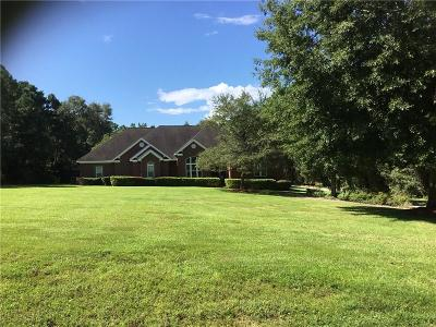 Baldwin County Single Family Home For Sale: 31485 Blakeley Way