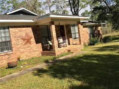 Mobile County Single Family Home For Sale: 13545 Lyons Avenue