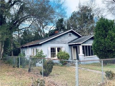 Mobile Single Family Home For Sale: 669 Carver Street