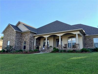 Baldwin County Single Family Home For Sale: 7766 Lake Boulevard