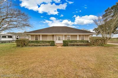 Mobile Single Family Home For Sale: 10620 Jeff Hamilton Road