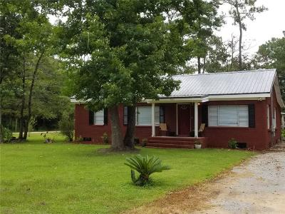 Theodore Single Family Home For Sale: 9611 Pineview Avenue