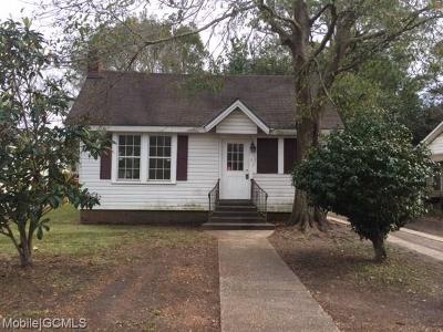 Mobile Single Family Home For Sale: 419 Mohawk Street