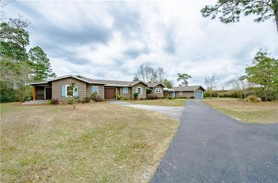 Mobile County Single Family Home For Sale: 2350 Park Place