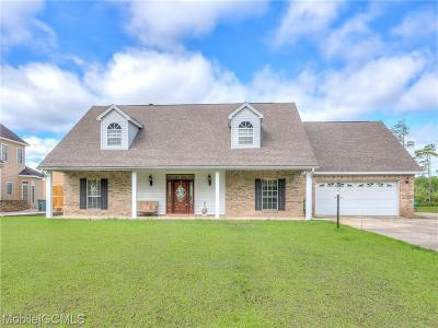 Baldwin County Single Family Home For Sale: 9095 Bay Point Drive