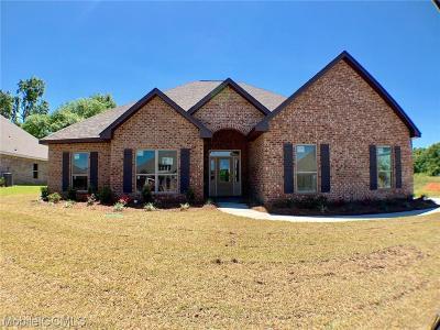 Single Family Home For Sale: 9005 Amelia Drive