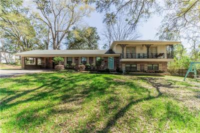 Saraland Single Family Home For Sale: 918 Paul Street