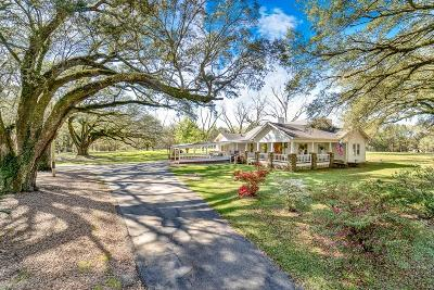 Baldwin County Single Family Home For Sale: 39099 State Highway 225