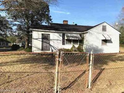 Mobile Single Family Home For Sale: 2067 Zula Lane