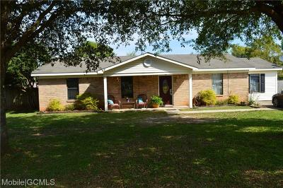 Mobile County Single Family Home For Sale: 9900 Lott Court N