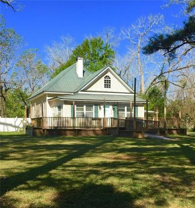 Citronelle Single Family Home For Sale: 19025 6th Street