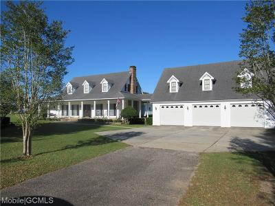 Mobile County Single Family Home For Sale: 8650 McMillan Road