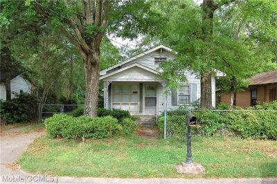 Mobile Single Family Home For Sale: 205 Ogden Avenue
