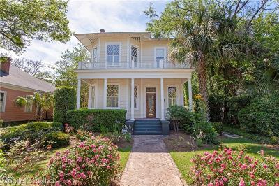 Mobile Single Family Home For Sale: 100 Georgia Avenue S