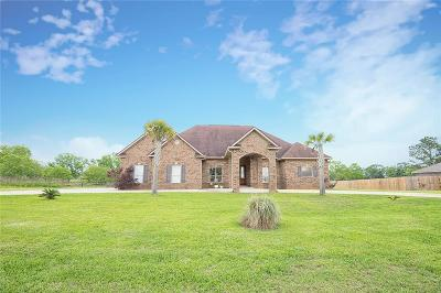 Baldwin County Single Family Home For Sale: 21364 County Road 65