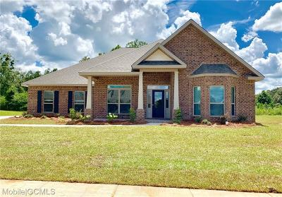 Single Family Home For Sale: 9015 Amelia Drive