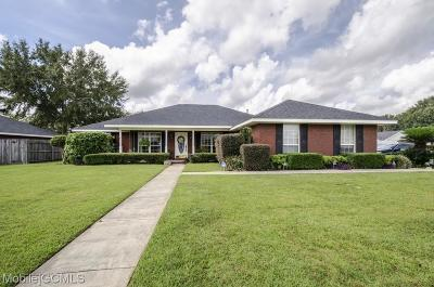 Single Family Home For Sale: 8541 Irongate Way