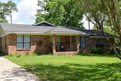 Bayou La Batre Single Family Home For Sale: 13545 Lyons Avenue
