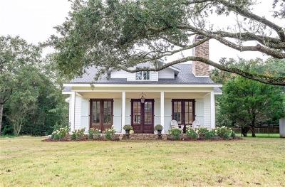 Baldwin County Single Family Home For Sale: 358 Wisteria Street