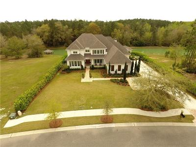 Baldwin County Single Family Home For Sale: 533 Falling Water Boulevard