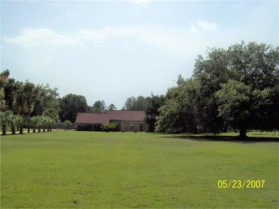 Mobile Single Family Home For Sale: 13033 Tanner Williams Road