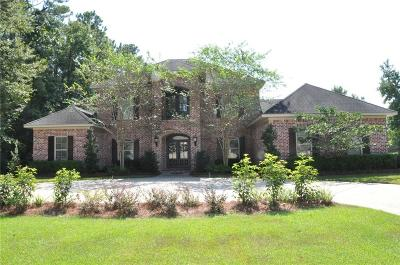 Mobile County Single Family Home For Sale: 5445 Rabbit Creek Drive