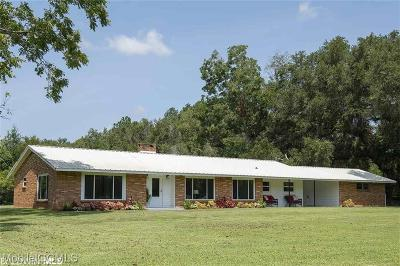 Baldwin County Single Family Home For Sale: 16475 River Park Road #D