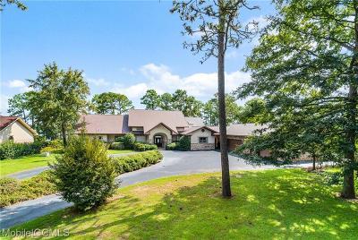 Baldwin County Single Family Home For Sale: 8698 Bay View Drive