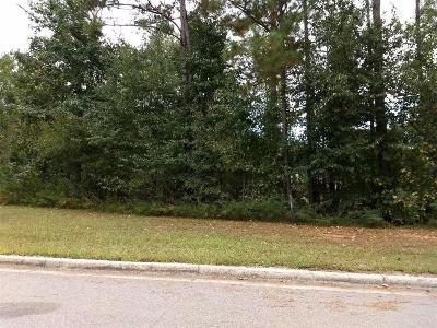 Auburn Residential Lots & Land For Sale: 2252 Morgan Drive