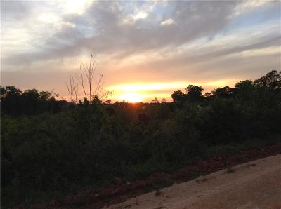 Lee County Residential Lots & Land For Sale: Lot 2 Lee Road 348