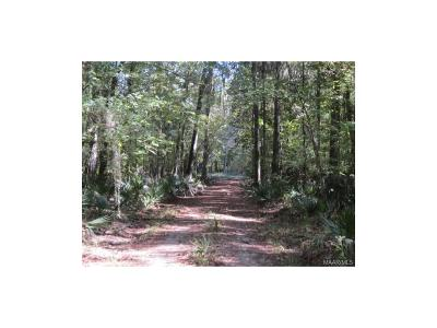 Residential Lots & Land For Sale: 279 Tiger Oak Drive Road