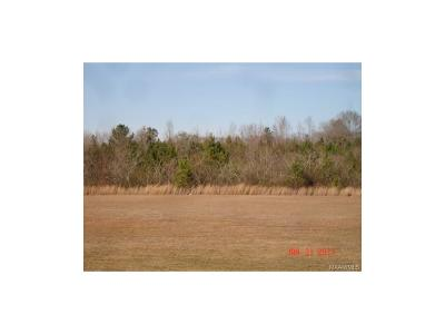 Residential Lots & Land For Sale: Co Rd 490
