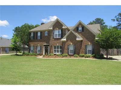 Montgomery Single Family Home For Sale: 8731 Marsh Ridge Drive