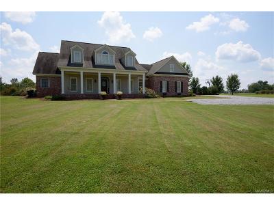 Pike Road Single Family Home For Sale: 1524 Mathews Road