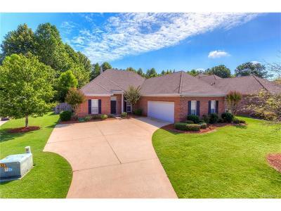 Pike Road Single Family Home For Sale: 9701 Farnham Drive