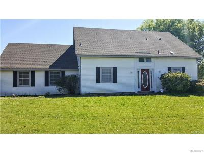 Montgomery Single Family Home For Sale: 2000 Briar Gate Drive