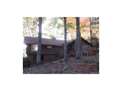 Single Family Home For Sale: 197 Holly Ridge