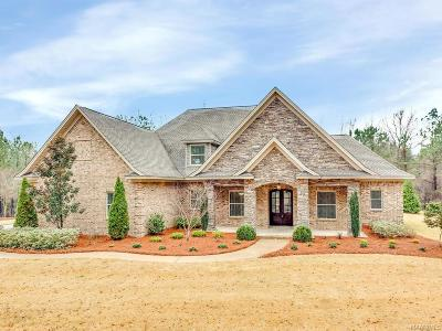 Wetumpka Single Family Home For Sale: 790 Southern Hills Drive