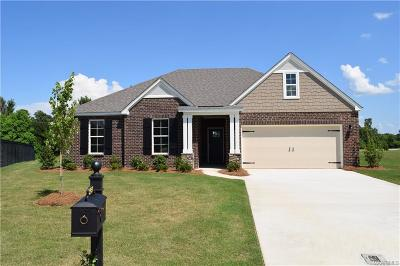 Montgomery Single Family Home For Sale: 5424 Sienna Circle