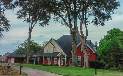 Montgomery Single Family Home For Sale: 9249 Bridge Pointe