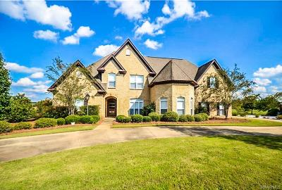 Montgomery Single Family Home For Sale: 8737 Vintage Way