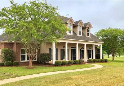 Montgomery Single Family Home For Sale: 9249 Bradford Place